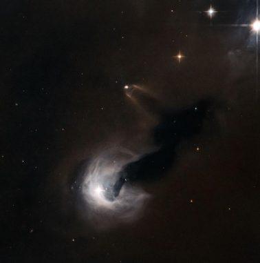 Der Reflexionsnebel [B77] 63 und rechts daneben die Dunkelwolke Dobashi 4173, aufgenommen vom Weltraumteleskop Hubble. (ESA / Hubble & NASA)