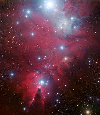 Optische Aufnahme der Sternentstehungsregion NGC 2264, die einen Sternhaufen mit jungen Sternen enthält. Pulsationen im Licht von einigen dieser Sterne wurden verwendet, um die physikalischen Prozesse vor dem Einsetzen der Kernfusion in ihrem Innern abzuleiten. (ESO)