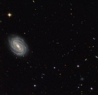 Die Spiralgalaxie PGC 54493, aufgenommen vom Weltraumteleskop Hubble. (ESA / Hubble & NASA; Acknowledgement: Judy Schmidt (geckzilla.com))
