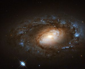 Hubble-Aufnahme der Spiralgalaxie NGC 4102 im Sternbild Großer Bär. (ESA / Hubble, NASA and S. Smartt (Queens University Belfast); Acknowledgement: Renaud Houdinet)