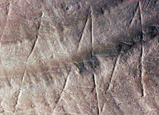 Die Gravur auf der fossilen Muschelschale aus der Ausgrabungsstätte Trinil auf der indonesischen Insel Java. Die Gravur stammt von Homo erectus. (Photo: Wim Lustenhouwer, Vrije Universiteit)