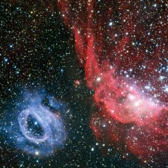Diese Aufnahme von NGC 2020 (links) und NGC 2014 (rechts) in der Großen Magellanschen Wolke wurde vom Very Large Telescope in Chile gemacht. (ESO)