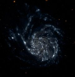 GALEX-Aufnahme von Messier 101, der sogenannten Feuerrad-Galaxie. (NASA / JPL / Caltech)