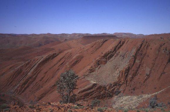 Sedimentgesteine im Nordwesten Australiens. Einige der untersuchten Proben stammen von dort und enthalten chemische Hinweise auf Stickstofffixierung durch Mikroben. (R. Buick / UW)