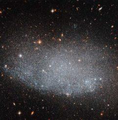 Hubble-Aufnahme der Zwerggalaxie UGC 8201. (ESA / Hubble & NASA)