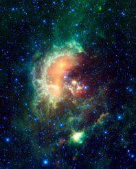 Der Kaulquappennebel, aufgenommen vom Wide-Field Infrared Survey Explorer (WISE). (NASA / JPL-Caltech / UCLA)