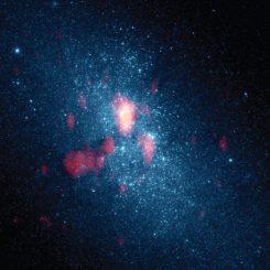 Optische Hubble-Aufnahme der Zwerggalaxie NGC 5253, kombiniert mit Beobachtungen des molekularen Gases mit dem Submillimeter Array (rot). Die helle Zentralregion scheint Sterne mit einer zehnfach höheren Rate zu produzieren als unsere Milchstraßen-Galaxie, möglicherweise aufgrund des von der linken Seite einfallenden Gases. (Nature; NASA HST; SMA)