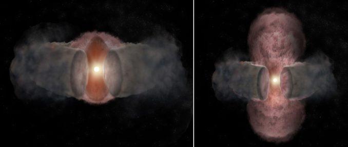 Künstlerische Darstellung der Entwicklung von W75N(B)-VLA 2. Links, im Jahr 1996, expandiert ein heißer Wind des jungen Sterns fast kugelförmig in alle Richtungen. Rechts (2014) erscheint der heiße Wind durch die Wechselwirkung mit dem umgebenden Staubtorus länglich. (Bill Saxton, NRAO / AUI / NSF)