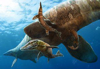 Diese künstlerische Darstellung zeigt eine Gruppe Mosasaurier im Ozean. (Illustration by Julius T. Csotonyi)