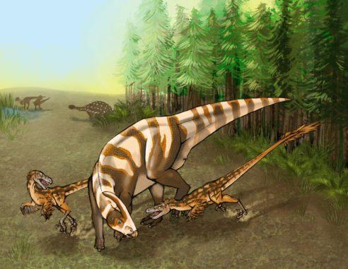 Zwei Dinosaurier der neu identifizierten Art Saurornitholestes sullivani attackieren einen jungen Hadrosaurier der Art Parasaurolophus tubicen (Illustration by Mary P. Williams)