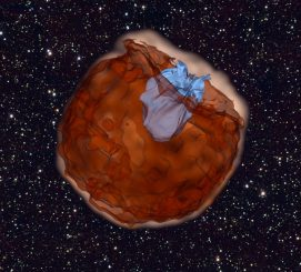 Diese Computersimulation zeigt die Überreste einer Supernova des Typs Ia (braun), die mit hohen Geschwindigkeiten von zig Millionen Kilometern pro Stunde auf ihren Begleitstern (blau) treffen. Die Interaktion erzeugt ultraviolettes Licht, während die expandierende Materie den Begleitstern einhüllt. (UC Berkeley, Daniel Kasen)