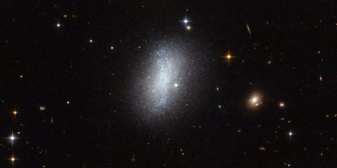 Hubble-Aufnahme der irregulären Zwerggalaxie PGC 18431. (ESA / Hubble & NASA)