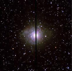 Der veränderliche Stern RS Pup gehört zu den Cepheiden. (ESO)