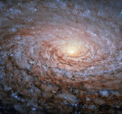 Hubble-Aufnahme der Sonnenblumen-Galaxie M63. (ESA / Hubble & NASA)