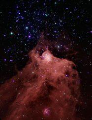 Cepheus B, hier ein Bild aus Daten der Weltraumteleskope Chandra und Spitzer, ist eine riesige Molekülwolke, in der neue Sterne entstehen. (NASA / CXC / JPL-Caltech / PSU / CfA)