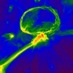 Schnappschuss aus einer Simulation der ersten Sterne im Universum. Er zeigt, wie die Gaswolke mit schweren Elementen angereichert worden sein könnte. (Image: Britton Smith, John Wise, Brian O'Shea, Michael Norman, and Sadegh Khochfar)