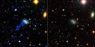 Diese Bilder zeigen die Galaxie IC 3418. Der Schweif ist allerdings nur im Ultraviolettbereich zu sehen. (NASA/JPL-Caltech)