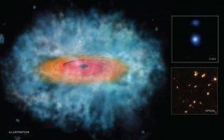Diese Illustration zeigt den bislang besten Beleg dafür, dass der direkte Kollaps einer Gaswolke zu supermassiven Schwarzen Löchern im frühen Universum geführt haben könnte. (NASA / CXC / STScI)