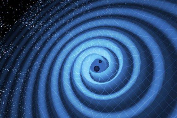 Diese künstlerische Illustration zeigt die Verschmelzung zweier Schwarzer Löcher und die von ihnen emittierten Gravitationswellen. In Wirklichkeit würde die Region in der Nähe der Schwarzen Löcher hochgradig verzerrt erscheinen, und die Gravitationswellen wären viel zu klein, um optisch beobachtet zu werden. (Image: T. Pyle / LIGO)