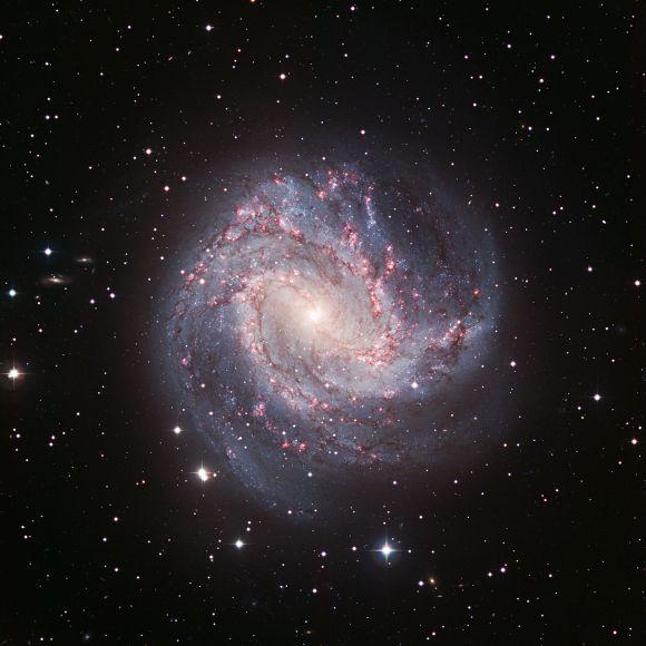 Die Südliche Feuerrad-Galaxie in sichtbarem Licht (ESO)