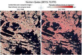 Ein Vergleich derselben Region in Quebec zwischen 1986 (links) und 2004 zeigt eine dichtere gewordene Vegetation (Jeff Masek)