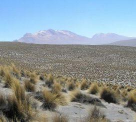 Eines der von den Forschern untersuchten Trockengebiete war diese Region in Peru (David Eldridge et al.)