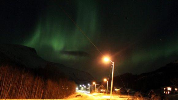 Nordlicht über Bjerkvik, Norwegen (Frode Nikolaisen)
