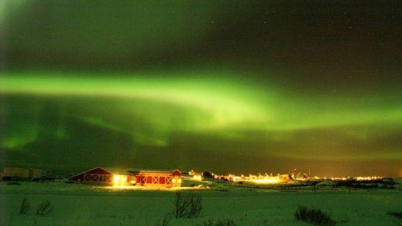 Nordlicht über Andøya, Norwegen (Harald Pedersen)