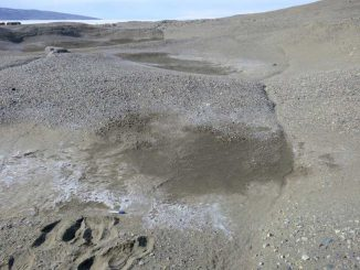 Diese feuchten Bodenstellen in den McMurdo Dry Valleys werden durch salzige Böden verursacht, die Wasser aus der Atmosphäre abziehen. (Photo courtesy of Joseph Levy, Oregon State University)