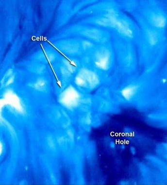 Standbild aus dem unten eingebettetem Video, dass die Entwicklung koronaler Zellen zeigt. (NASA / STEREO / NRL)