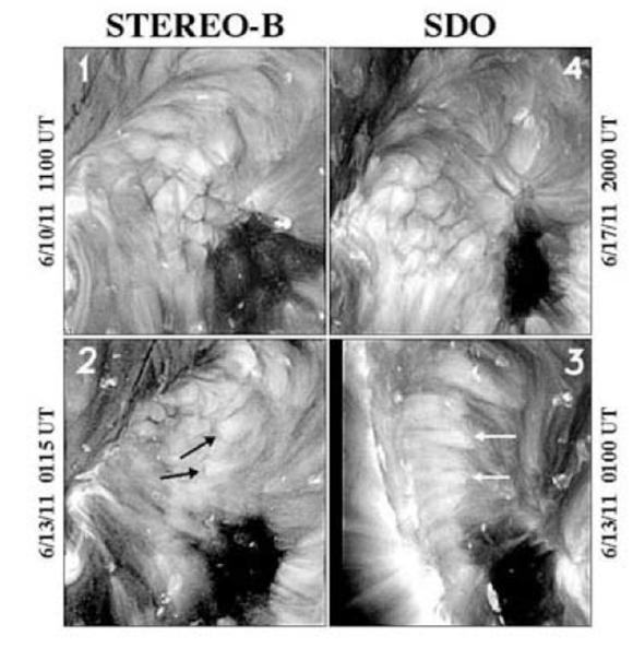 Die beiden oberen Bilder zeigen koronale Zellen in der Draufsicht. Ihre Durchmesser betrugen knapp 30.000 Kilometer. Die unteren Bilder zeigen dieselbe Region von der Seite. Die schwarzen und weißen Pfeile markieren die identischen Punkte auf der Sonne. (NASA / STEREO / SDO / NRL)