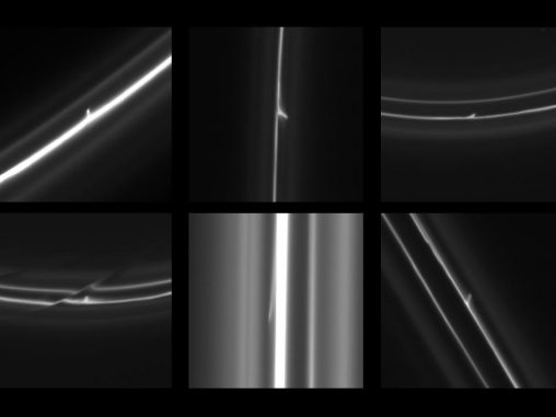 Diese sechs Aufnahmen von Cassini zeigen winzige Schweife, die aus Saturns F-Ring herausgezogen wurden. (NASA / JPL-Caltech / SSI / QMUL)