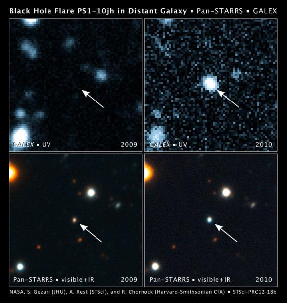 Oben links: Die Galaxie (Pfeil) vor dem Ausbruch, aufgenommen vom GALEX in ultraviolettem Licht. Oben rechts: GALEX-Aufnahme der Galaxie nach dem Ausbruch. Die Galaxie wurde im ultravioletten Spektrum 350 Mal heller. Unten links: Pan-STARRS-Aufnahme der Galaxie vor dem Ausbruch. Unten rechts: Pan-STARRS-Aufnahme des Ausbruchs. Das Licht des Ausbruchs ist viel blauer (heißer) als das der Galaxie. (NASA, S. Gezari (The Johns Hopkins University), A. Rest (STScI), and R. Chornock (Harvard-Smithsonian Center for Astrophysics))