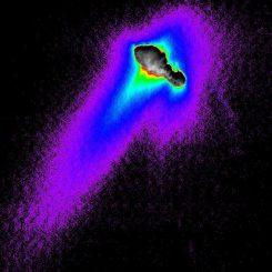 Der Kern, die Jets und die Koma des Kometen Borrelly, aufgenommen von der Raumsonde Deep Space 1. (NASA / JPL)