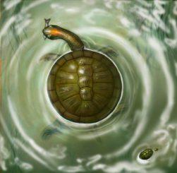 Künstlerische Darstellung der prähistorischen Schildkröte Puentemys mushaisaensis. (Illustration by Liz Bradford)