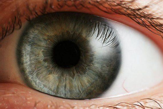 Ein menschliches Auge. (Wikipedia / User: che / CC BY-SA 2.5)