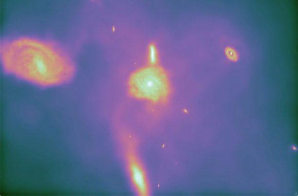 Standbild aus der neuen Simulation (siehe das Video unten), die mit der Software Arepo erstellt wurde. Es demonstriert die Fähigkeit Arepos, realistische Spiralgalaxien zu produzieren. (CfA / UCSD / HITS / M. Vogelsberger (CfA) & V. Springel (HITS))