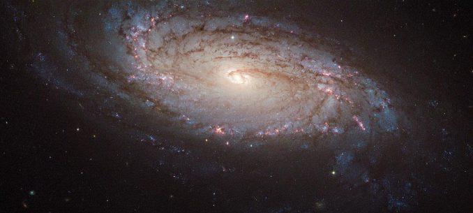 Die Spiralgalaxie NGC 5806, aufgenommen vom Weltraumteleskop Hubble. Unten rechts ist die Supernova SN 2004dg als gelblicher Punkt erkennbar. (ESA / Hubble & NASA)