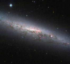 Die Spiralgalaxie NGC 7090, aufgenommen vom Weltraumteleskop Hubble. (ESA / Hubble & NASA / Acknowledgement: R. Tugral)