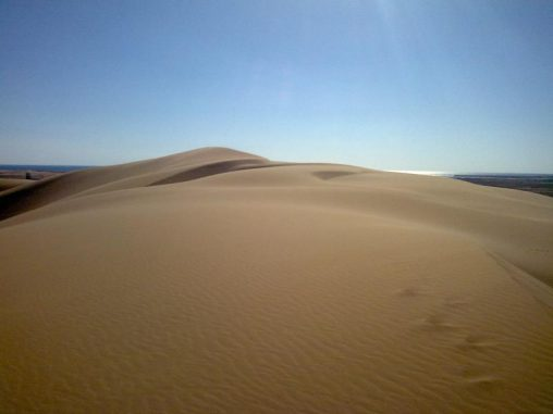 """""""Singende"""" Sanddünen wie diese in Al-Askhara (Oman) summen oft in mehreren Frequenzen gleichzeitig. (Simon Dagois-Bohy, Université Paris Diderot)"""