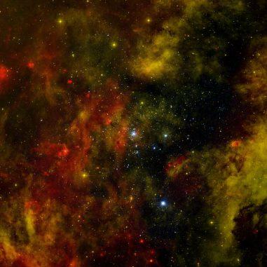 Kompositaufnahme des Sternhaufens Cygnus OB2. (X-ray: NASA / CXC / SAO / J.Drake et al, Optical: Univ. of Hertfordshire / INT / IPHAS, Infrared: NASA / JPL-Caltech)