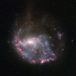 Die verzerrte Spiralgalaxie NGC 922, aufgenommen vom Weltraumteleskop Hubble. (NASA / ESA)