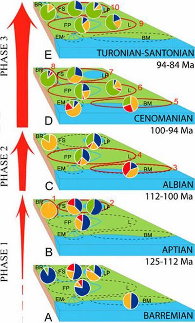 Diese Darstellung zeigt die Verschiebung von Farnen (blau), Koniferen (rot) und anderen Gymnospermen (orange) hin zu Angiospermen (grün) in verschiedenen Gewässerumgebungen vor 130 bis 84 Millionen Jahren. (Courtesy of Indiana University)