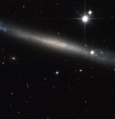 "Die ""Nadelgalaxie"" IC 2233, aufgenommen vom Weltraumteleskop Hubble. (ESA / Hubble & NASA Acknowledgement: Luca Limatola)"