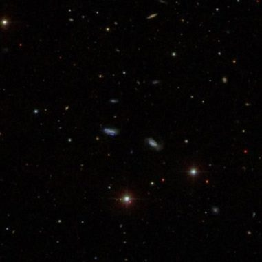 Das Bild aus dem Digital Sky Survey zeigt eine Gruppe Zwerggalaxien, die gravitativ aneinander gebunden sind. (Credit: Sloan Digital Sky Survey)
