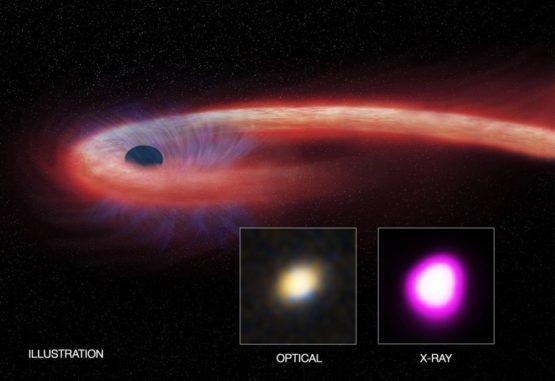 Künstlerische Darstellung des Tidal Disruption Events. Die kleinen Bilder zeigen das Objekt in optischen Wellenlängen und im Röntgenlicht. (X-ray: NASA / CXC / UNH / D. Lin et al, Optical: CFHT, Illustration: NASA / CXC / M. Weiss)