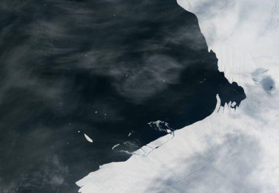 Ein Riss im Pine-Island-Gletscher in der Antarktis, aufgenommen von Landsat 8. (Credit: NASA Earth Observatory image by Jesse Allen, using Landsat data from the U.S. Geological Survey and MODIS data from the Level 1 and Atmospheres Active Distribution System (LAADS))