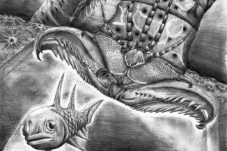 Künstlerische Darstellung von Websteroprion armstrongi beim Angriff auf einen Fisch. (Image Credit: James Ormiston)