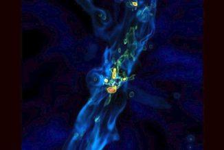 Simulation eines Quasars, der aufgrund intensiver Akkretionsströme wächst. (Credit: Los Alamos National Laboratory)