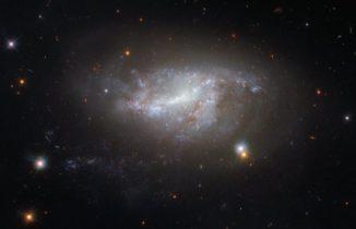 NGC 5917, aufgenommen vom Weltraumteleskop Hubble. (Credit: ESA / Hubble & NASA)